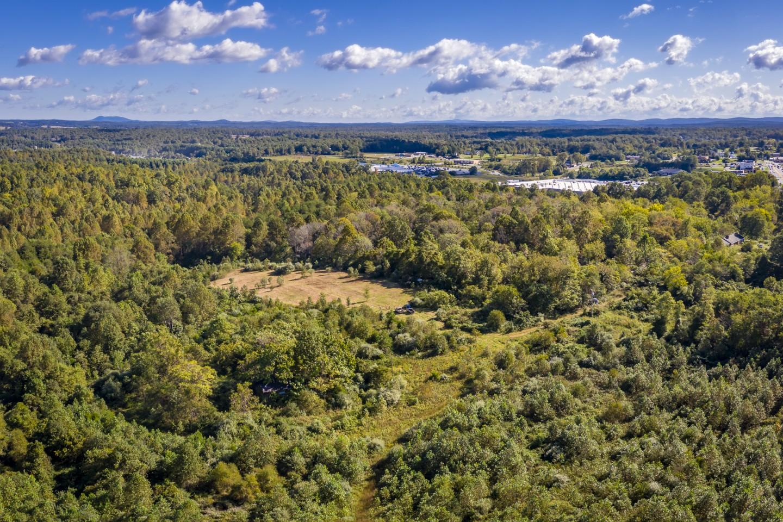 14387 Spotswood Trail Ruckersville VA 22968